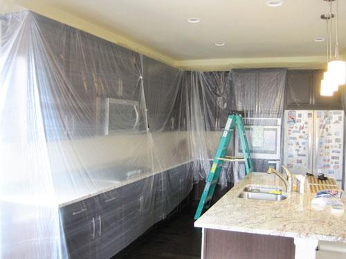 Pintando las paredes y el techo