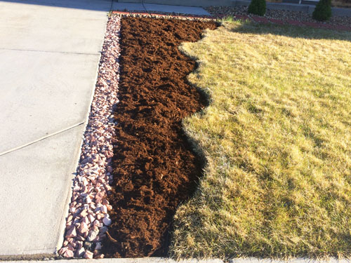 How to start a flower bed in a grassy area