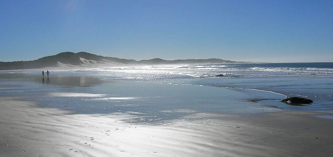 East London- The Gateway To The Best Beach Destination In South Africa