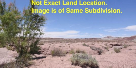 Cheap AZ Land For Sale- Purchase Cheap AZ Land For Sale- Inexpensive AZ Land