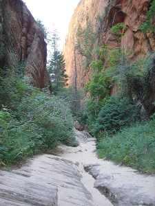 450px-Hidden_canyon6