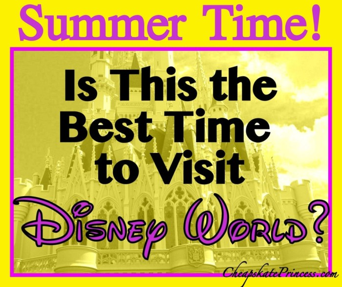 visit Disney World in the summer
