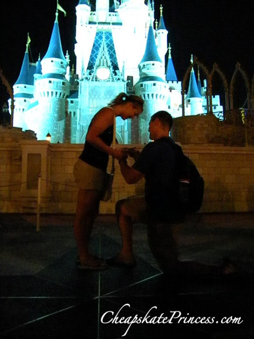 proposal at Disney World