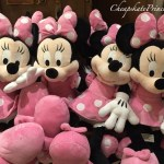 Impulse Buys: How Returning Kid's Purchases Is Costing You Money at Disney World