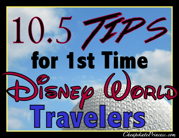 Tips for first time Disney World visitors