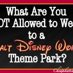 What You Can NOT Wear to Disney Theme Parks: A Cheapskate Princess Guide