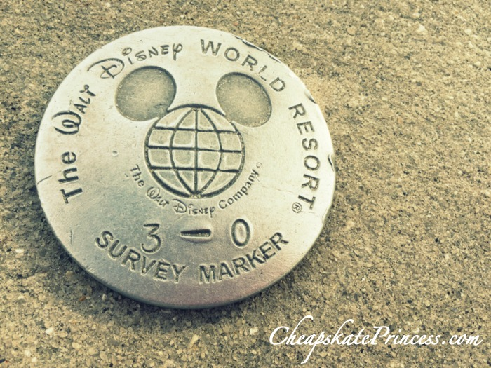 Disney World survey markers
