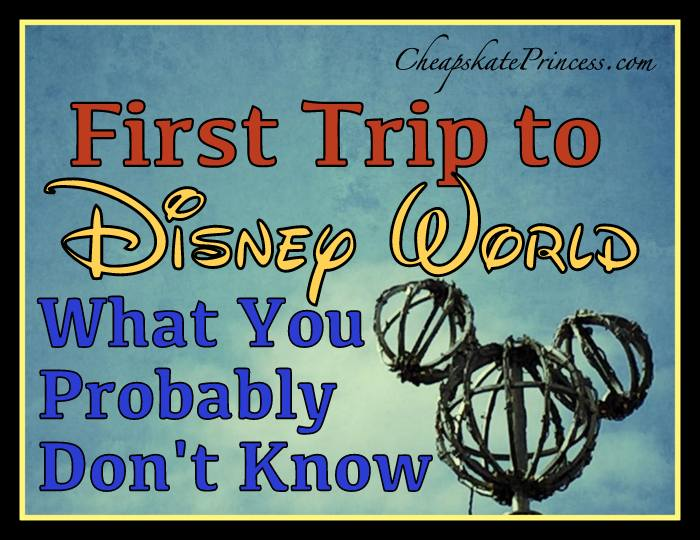 What to know for a trip to Disney World