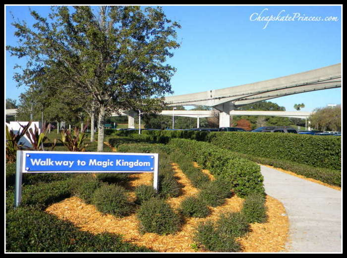 how much walking will you do at the Magic Kingdom