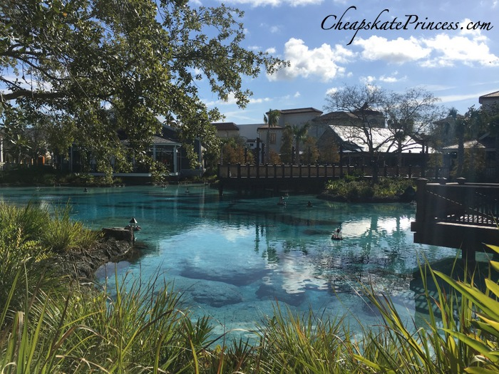 disney-springs-in-orlando