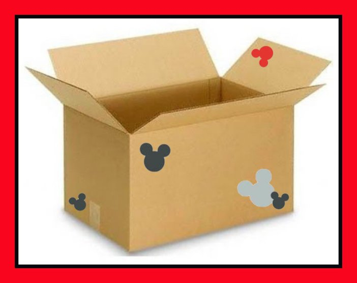 a box shipped to a Disney World resort