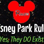 Disney World Theme Park Rules