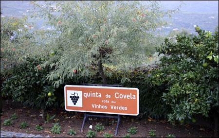 Quinta de Covela