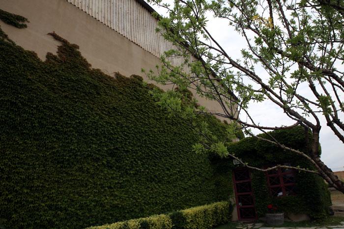 Domaine Kikones exterior