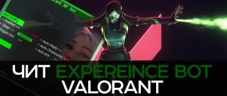 Valorant Expereince Bot