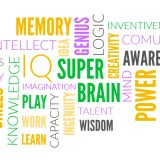 SUPERBRAIN exercises