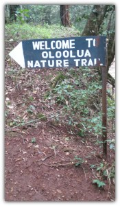 Oloolua Nature Trail Place is the place to be after a long week at work