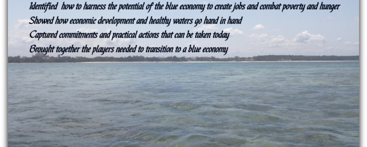 What I learnt from the Blue Economy Conference 2018