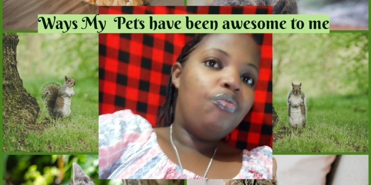 Ways My Pets have been awesome to me
