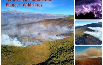 We are in a combustible Planet : Wild Fires