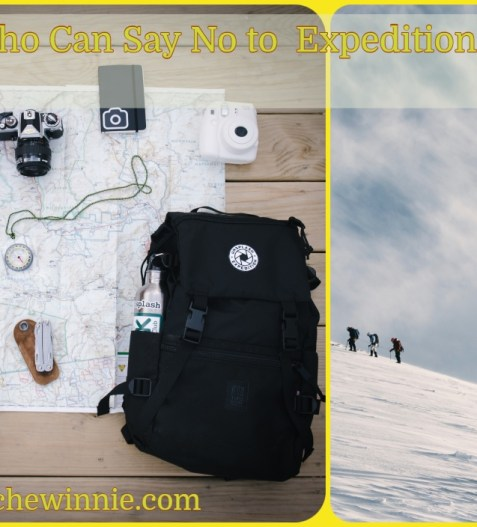 Who Can Say No to Expeditions ?