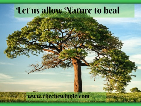 Let us allow Nature to heal
