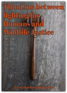 Thin Line between fighting for Humans and Wildlife Justice