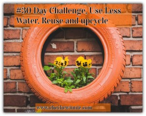 #30 Day Challenge, Use Less Water, Reuse and up-cycle