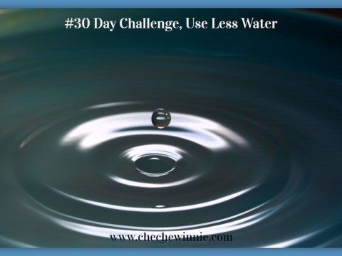 #30 Day Challenge, Use Less Water