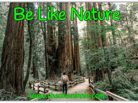 Be Like Nature