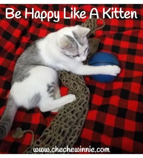 Be Happy Like A Kitten