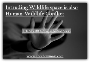 Intruding Wildlife space is also Human-Wildlife Conflict