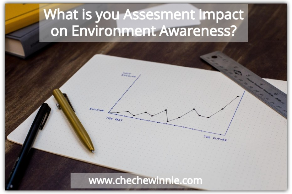 What is you Assesment Impact on Environment Awareness_