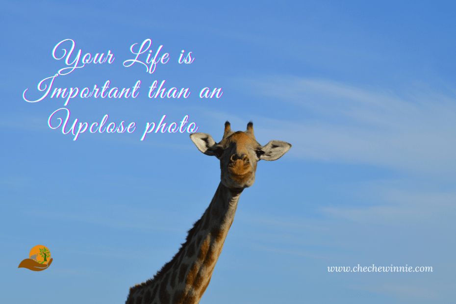 Your Life is Important than an Up-close photo
