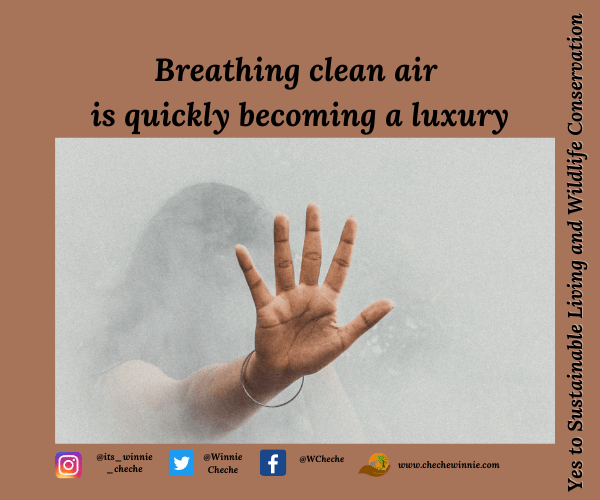 Breathing clean air is quickly becoming a luxury