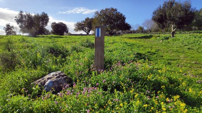 פארק הטבע רמת הנדיב מסלול כחול