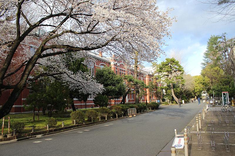 אוניברסיטת קיוטו