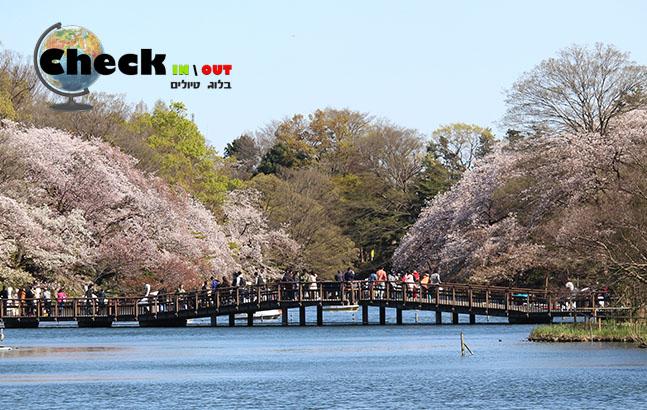 מסלול טיול חמישה ימים ברחבי טוקיו