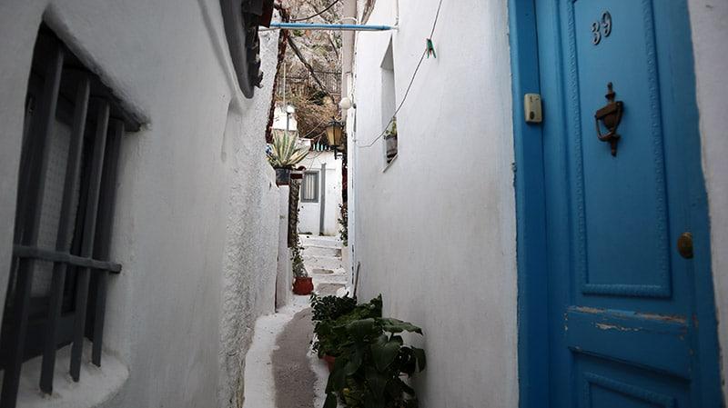 שכונת אנאפיוטיקה