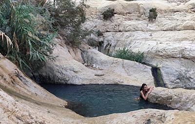 הבריכות הגבוהות בנחל דוד