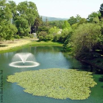 Sterling Vineyards pond