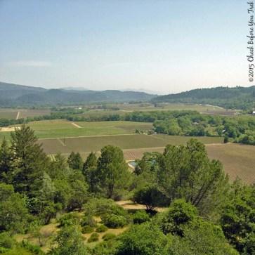 Sterling Vineyards view