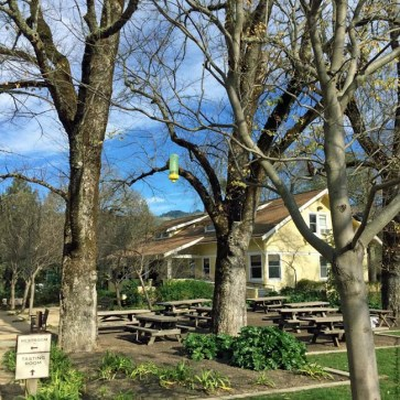 Picnic Area at Frank Family Vineyards