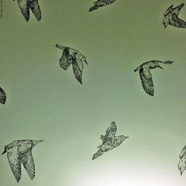 """Put a Bird on It"" (from the IFC show Portlandia) - Bird wallpaper found in a Portland hotel - Portland, Oregon"