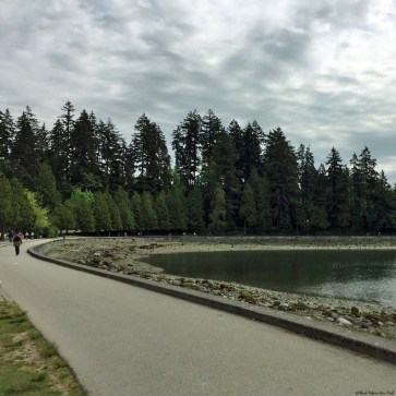 Stanley Park Trail - Vancouver, British Columbia, Canada