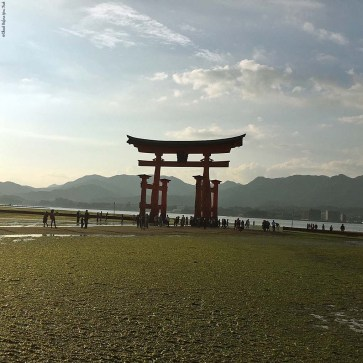 O-Torii Gate during low tide - Miyajima Island, Itsukushima, Japan