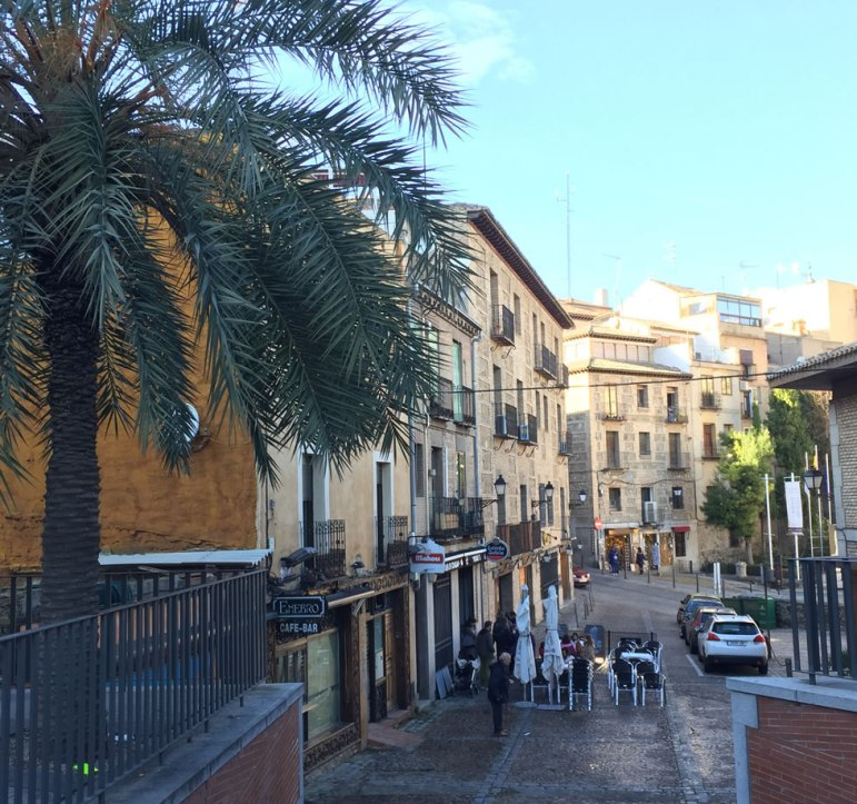 Palm tree and cafe in Toledo Spain