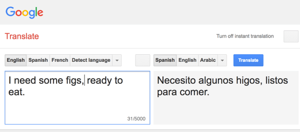 Google Translate in action, as part of our methods to learn spanish blog post