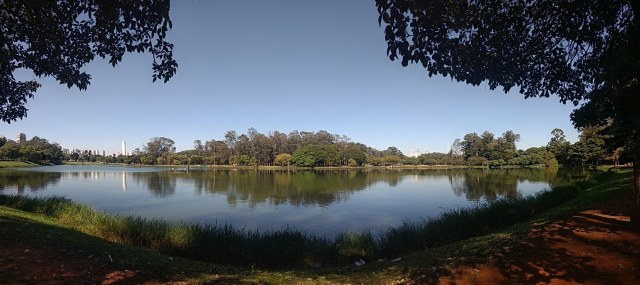 Parque do Ibirapuera oferece contato com a natureza dentro da capital paulista