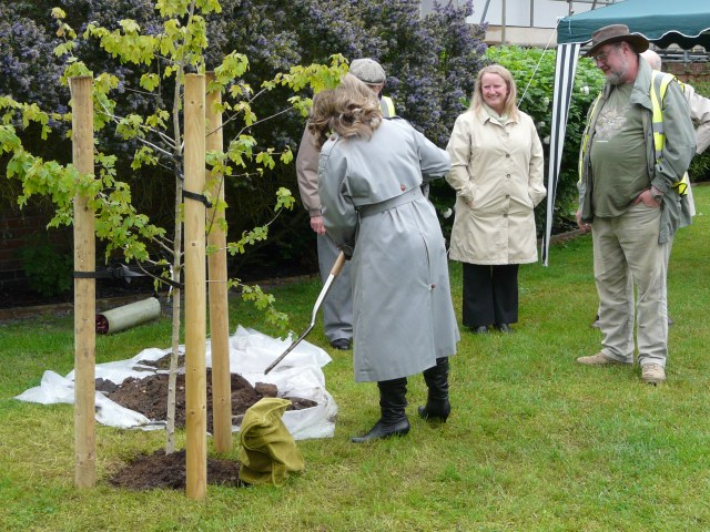 Diamond Jubilee Field Maple Tree Planting